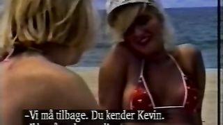 Sun Bunnies (1991)